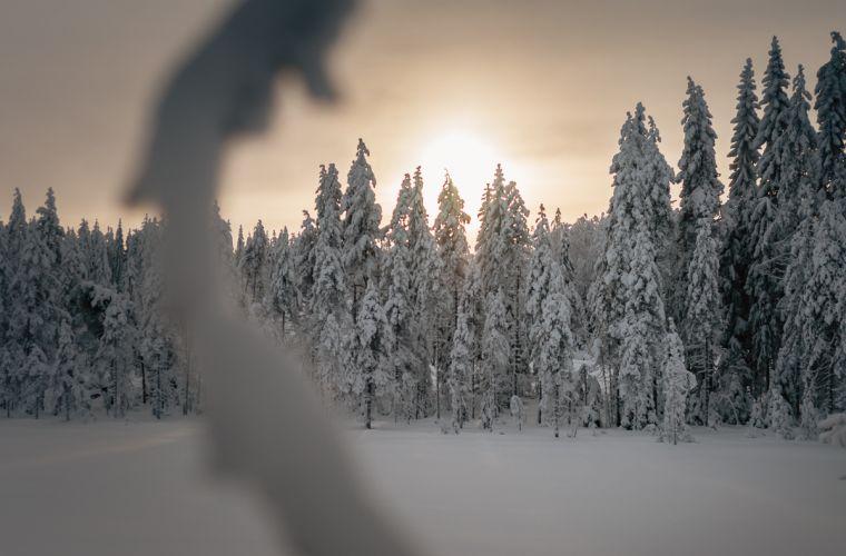 Upeita luontoelämyksiä hiihtovaelluksella